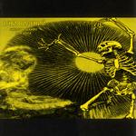 Огни Видений - Скелет в шкафу для бога