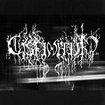 Cisfinitum - Live Earth