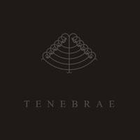 Majdanek Waltz / Sal Solaris - Tenebrae