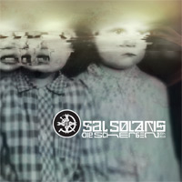 Sal Solaris - Die Scherben 2004-2010